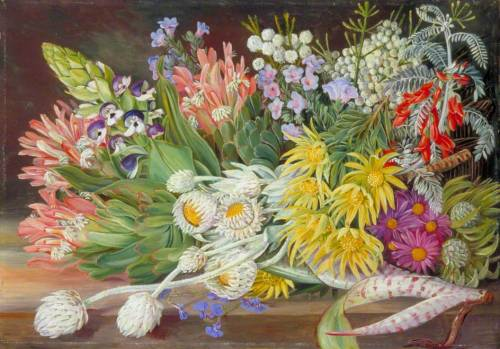 artshers:  Marianne North - A Medley of Flowers from Table Mountain, Cape of Good Hope (Royal Botanic Gardens Kew, Richmond, Surrey, United Kingdom)