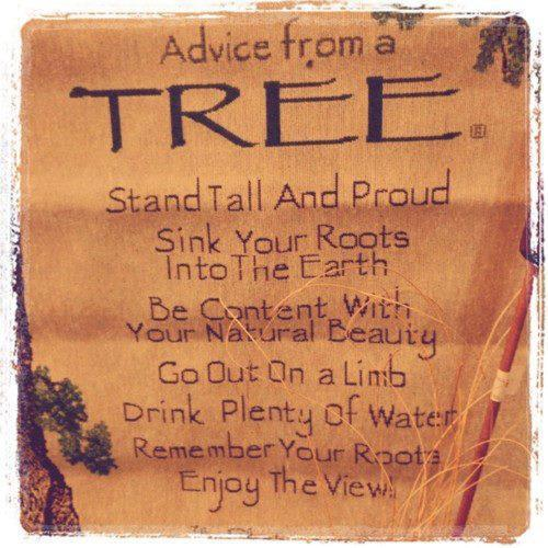 trees. so wise