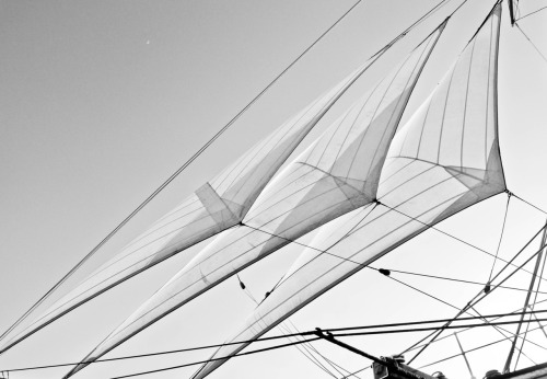 sails on the star of india. san diego bay, california, usa. 2012.