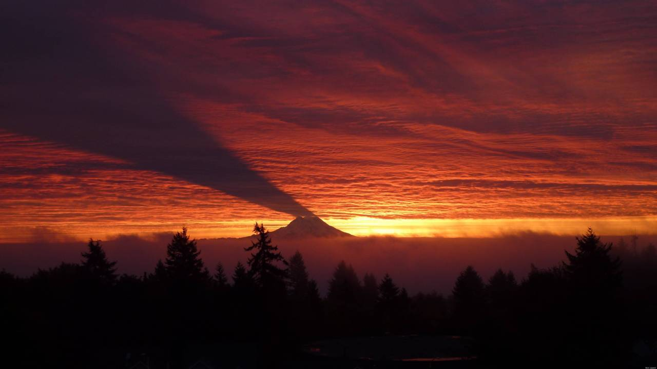 Mount Rainier Shadow
