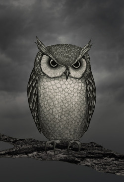 Some character design stuff I've been working on. Owl. 2012, ink, digital, graphite © Mai Ly Degnan