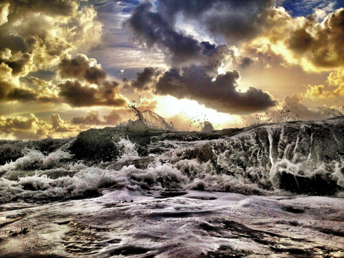 llbwwb:  Top of the morning wave. (by Andy Royston ( The Ft Lauderdale Sun project))