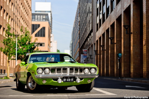 automotivated:  'cuda (by Katrox)