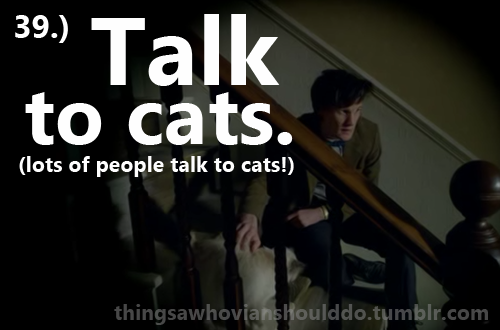 Things a Whovian should do: Talk to cats (lots of people talk to cats!). Submitted by: wholockedtardis