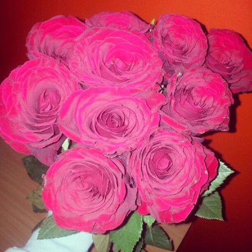 Valentines day isnt the only day a girl should get roses, thanks baby <3 #roses #flowers #love #boyfriend #red #instalove #instagood #instamood #photooftheday #photography #instacute  (Taken with instagram)