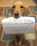 Good dog. (via Dog Breaks Silence On Hot-Button Social Issue | Happy Place)