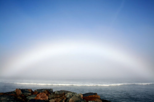 Fog Bow Over Ocean Beach  What is being seen is a fogbow, a reflection of sunlight by water drops similar to a rainbow but without the colors.