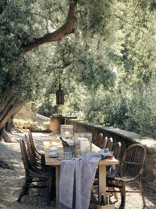 Sunday under the olive-trees