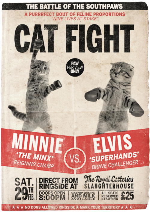 #29 of 365 Cat Fight Imagine if cats competed for the World Heavyweight Championship… (This poster is available to purchase - click here)