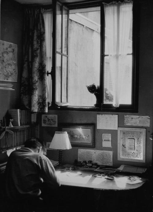 mondonoir:  Willy Ronis, Vincent et le chat, Paris, 1955