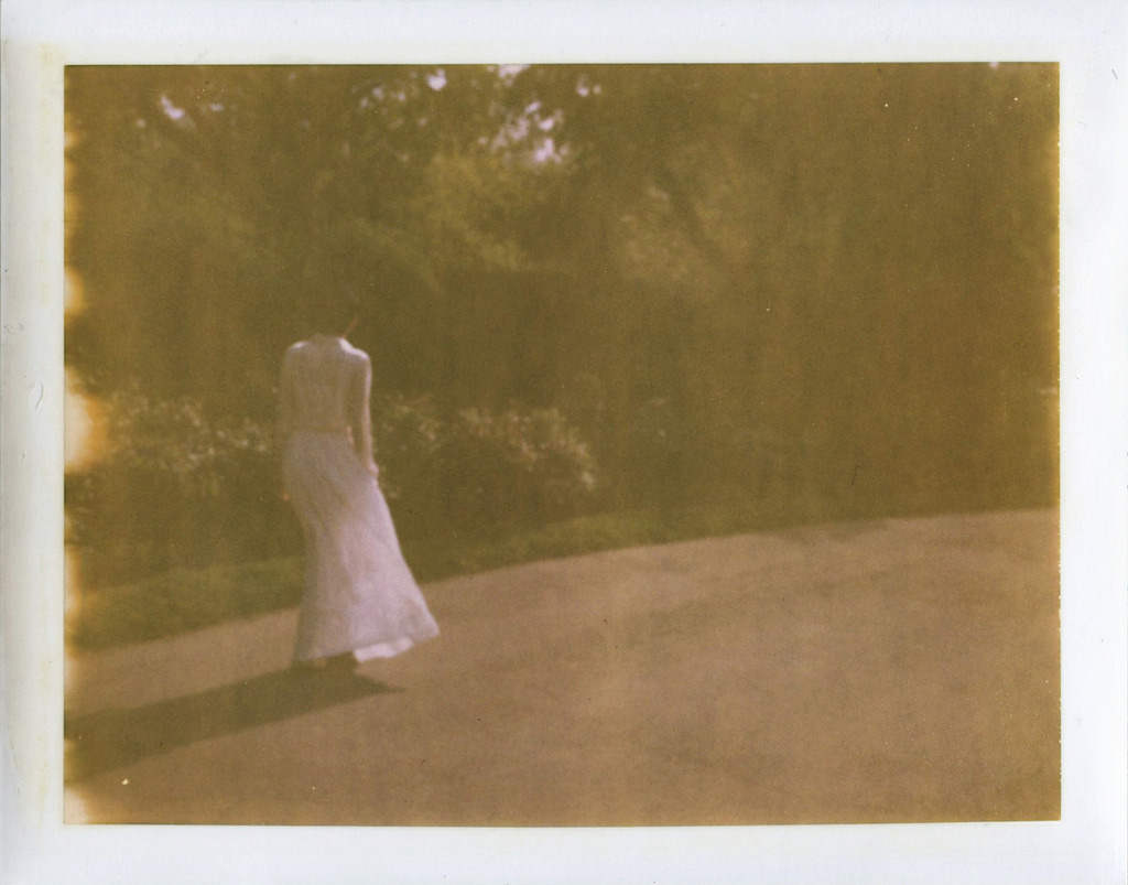 Month of May  (at Brooklyn Botanical Garden.  polaroid 690)