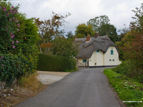The Tarrants, England