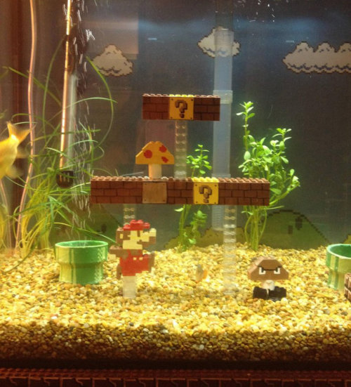 otlgaming:   MARIO, YOUR PRINCESS IS IN ANOTHER AQUARIUM?!?! Reddittor jennyleighb posted video and these photos of her roomate's 55 gallon aquarium that's been customized with a LEGO Super Mario Bros. level.  Here's a link to more photos showing the progession of the build.
