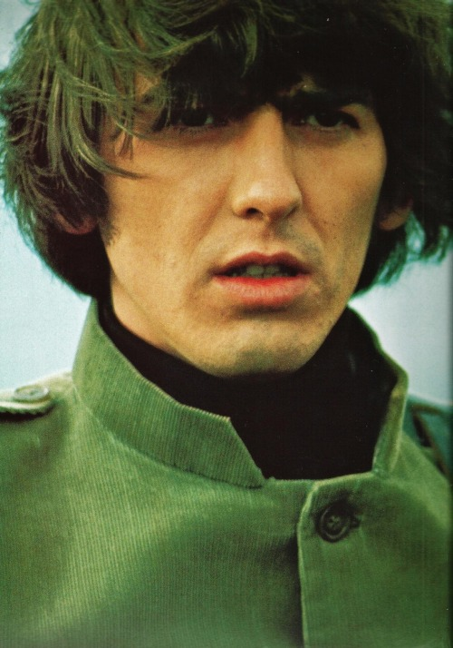thebeatlesordie:  41/100 pictures of George Harrison
