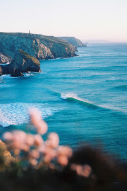 vintagerosegarden:  Cornwall, UK