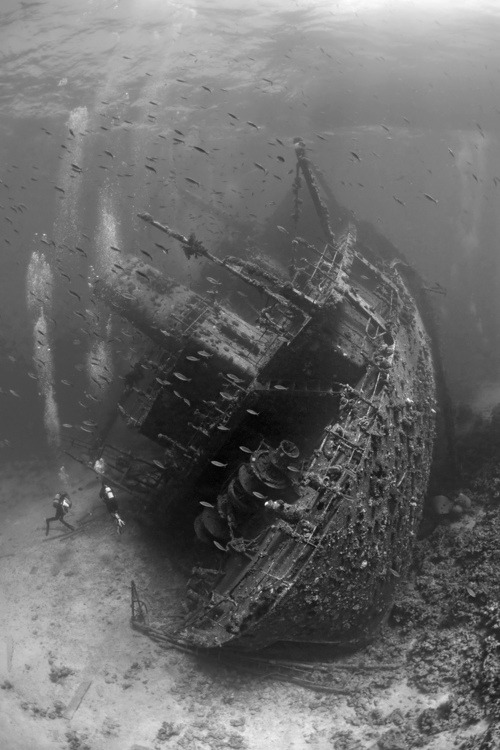 Photographer Ivo Vaessen - The wreck of the Carnatic in the Red Sea.