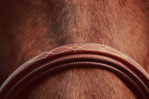 Fancy Stitich by =Equus-Photography