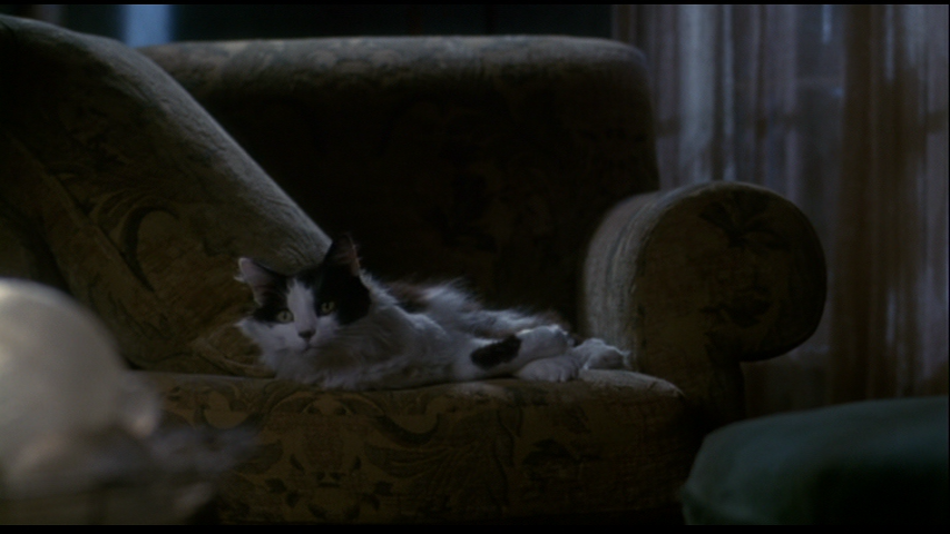 The Truth About Cats & Dogs (1996)dir. Michael Lehmann