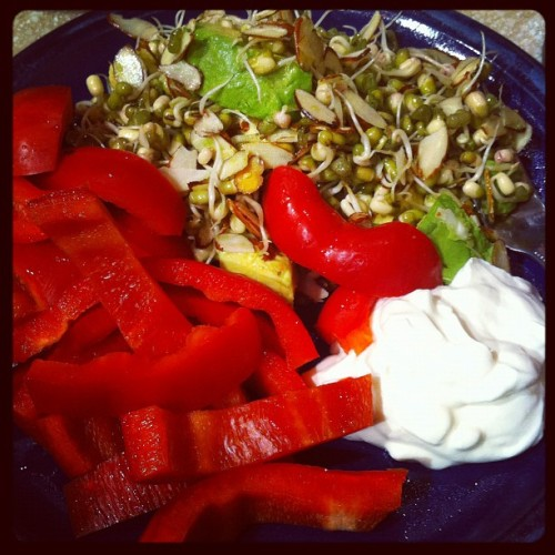 Sprout salad from 101 Cookbooks and a red pepper. (Taken with instagram)