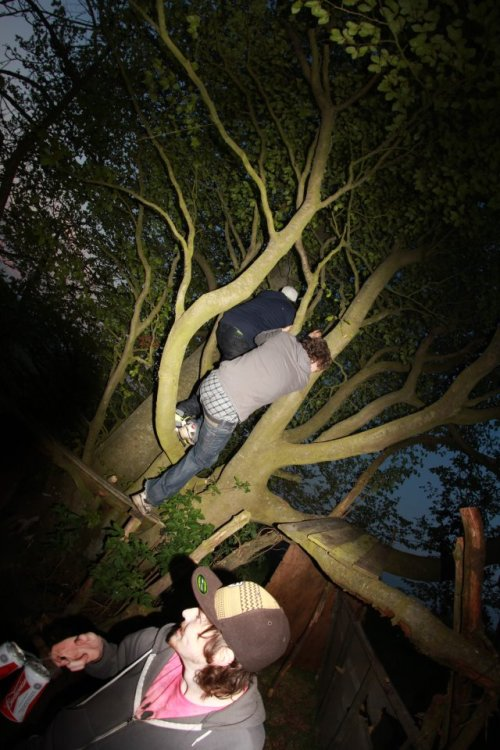 we found this mystical treehouse the other day, throwing a party there. try and find us.