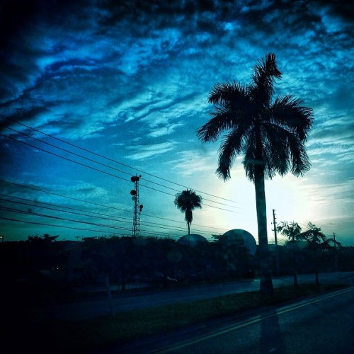 #sky #clouds #cloudporn #aun #palm #palmtrees #tree #silhouette #iphone #iphone4s #iphoneonly #iphoneography #iphonegraphy #igers #statigram #peterbarreda (Taken with Instagram at Miami)