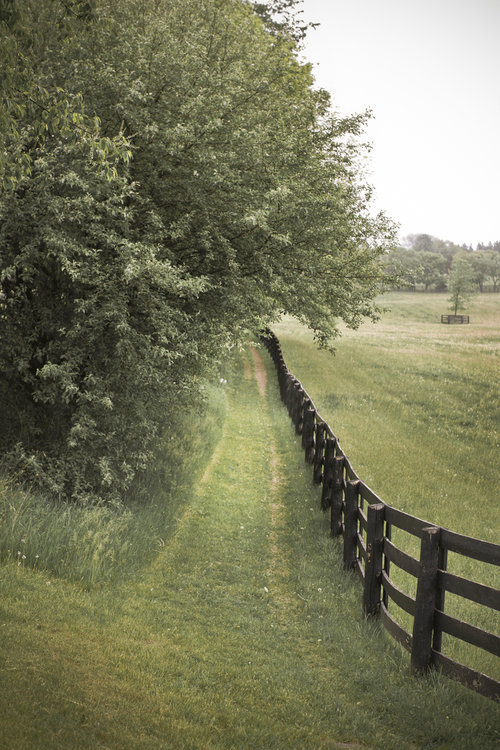 awomaninscience:  thegiftsoflife:  the farm.   Perfect.