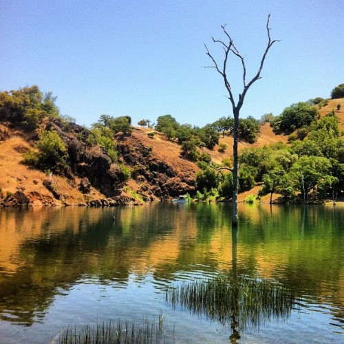 Old Sawmill Camp, Lake Sonoma, CA (Taken with instagram)