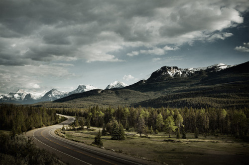landyscape:  (via Banff & Jasper on the Behance Network)