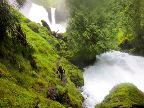 ridepdw:  So awesome. jennlevo:  McKenzie River Trail
