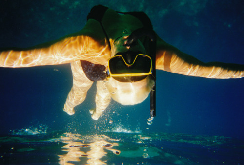 lomographicsociety:  Lomography Tag of the Day - underwater