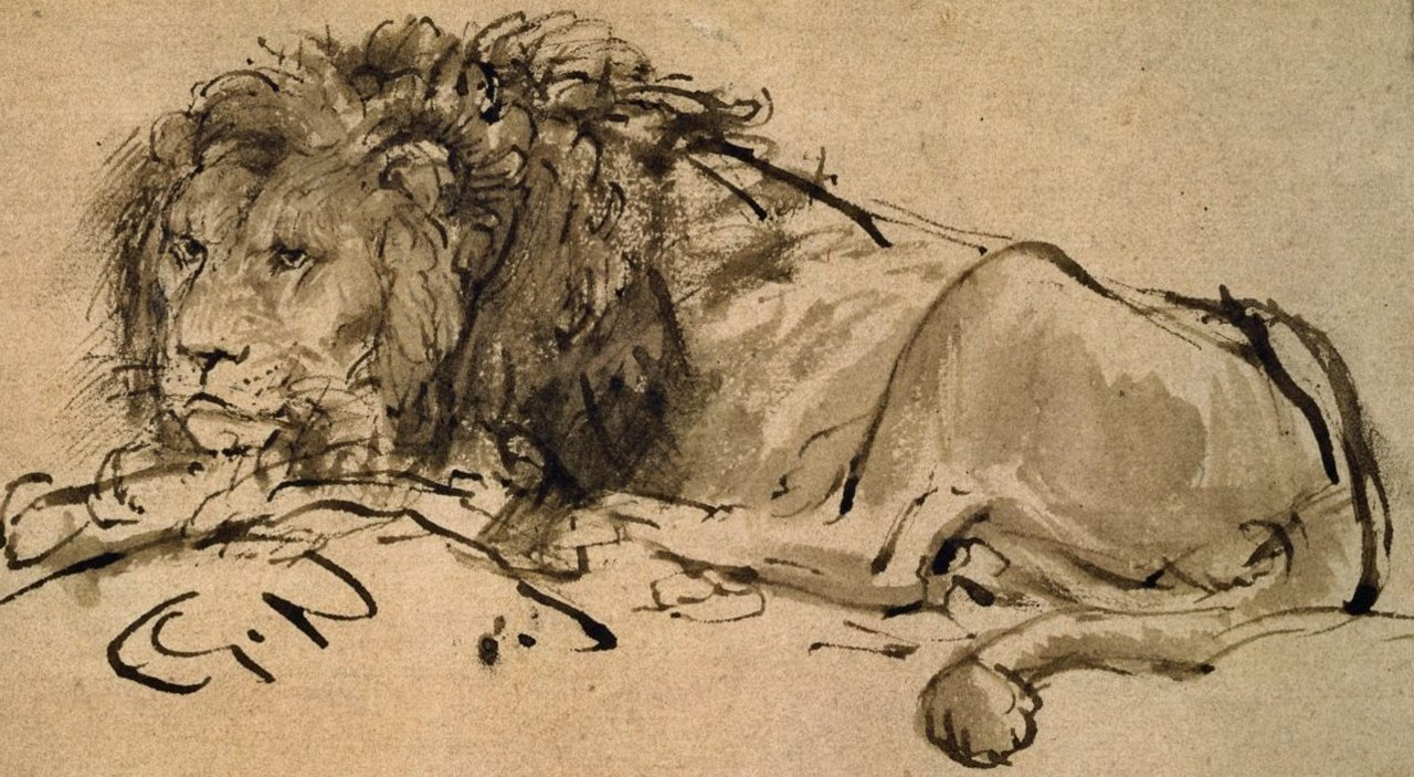 fckyeaharthistory:  Rembrandt - An extinct Cape Lion, 1650-52. Ink on paper