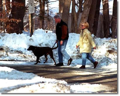"This article about Bill and Hillary Clinton in Chappaqua, where I grew up, really touches my heart. Because as most people who live in the town know, the Clintons are very visible in the community. Bill goes in for sandwiches at the deli where my little brother worked. Hillary dresses up to vote at my high school. You see them at the movie theater, and at Starbucks. When he was President, they would shut down all of the highways leading into the town, and the media would flock in the thousands to the parking lot of our local grocery store. Today, his presence is quiet, marked by a Suburban at the end of his road. I see them the most walking on the road where my parent's live, usually hand in hand. People say the Clintons are only married for political reasons, but if you were to catch them in such a state, alone except for the team of Secret Service that trail them no matter where they are, you'd see their affection for one another. My favorite Bill Clinton moments are these: 1. Walking down the driveway with my two adopted sisters when they were babies, and running into Bill Clinton. ""Those are some beautiful girls you have there,"" he told me. ""Thank you, Mr. President,"" I said to him. 2. My little brother, only 6-years-old, engaging in a 25 minute conversation with him about tae kwon do competitions at the local fire station.  3. My mother and father walking behind them for awhile one winter morning.  ""We saw the Clintons earlier today,"" my mother told me later. ""Where?"" my dad barked. ""We were walking behind them for like 10 minutes. You said hi to them,"" my mother told him. ""That was the Clintons?!"" my dad barked. That's when I knew he was getting old. I hope that they don't move out of Chappaqua.  (And as a side note, this picture, which I pulled off Google, was taken at a diagonal to my parent's driveway. The town recently condemned the house behind them, a modern sort of shamble, I assume for being an eyesore.)"