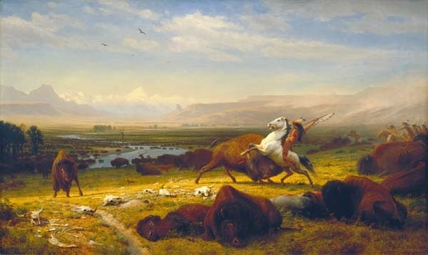 "The art: Albert Bierstadt, The Last of the Buffalo, 1888. The news: ""Our National Mammal,"" from the New York Times editorial page. The source: Collection of the Corcoran Gallery of Art, Washington."