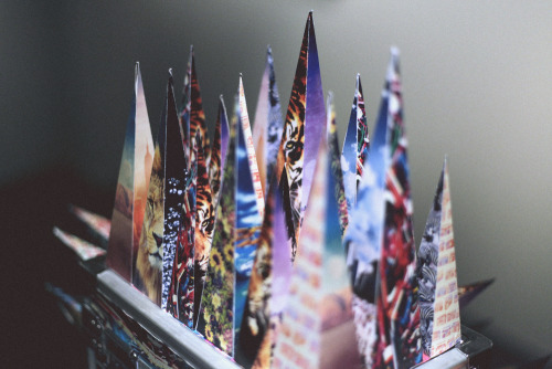 rocketk:   Paper points. I took this while shooting an exhibition tonight.