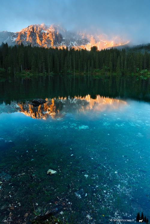 woodendreams:  (by Marco Dian)