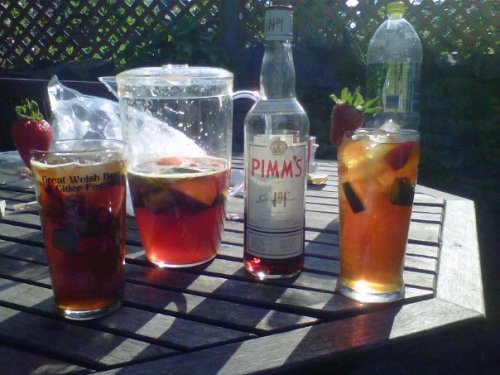 youknowyourebritishwhen:  Cant get more British than drinking Pimms in the Garden.