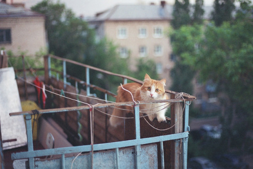 floorpl4n:  untitled by alesha_kudinov on Flickr.