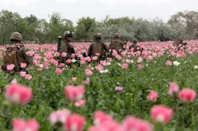 advancedsystemsarray:  Guarding the poppy fields in Afghanistan. Meanwhile, in Mexico, it's a bloodbath…