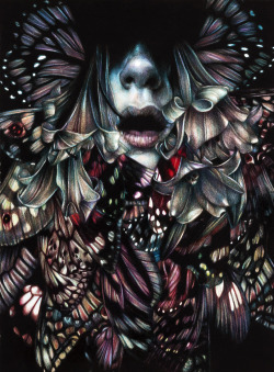 "marcomazzoni:   ""The Chemical Peacock"" 2012, colored pencils on paper, cm 38 x 28 "" Death and The Maiden "", Roq La Rue Gallery, Seattleopens Friday June 8th 6-9pm"