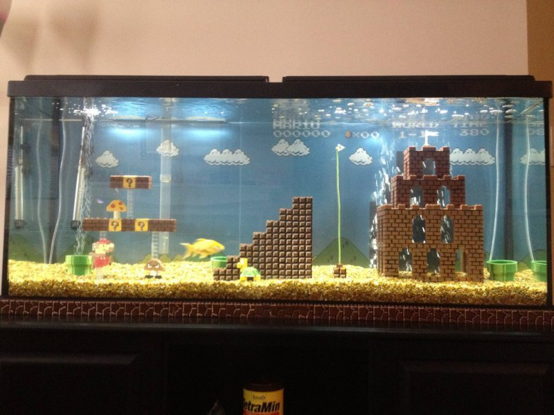 collegehumor:  Super Mario Aquarium Sorry, Mario, but the Princess is in another aquarium.   I need this because of reasons.  Devan, you know what they are, help me!
