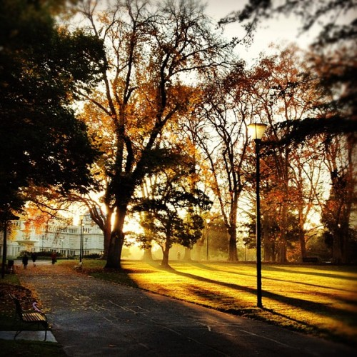 Good morning Melbourne. Nice job with the weather. (Taken with instagram)