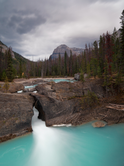 ecocides:  Natural Bridge Falls - Yoho National Park, British Columbia, Canada | image by Bin.D