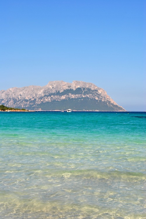 crystallized-bliss:  Today! Sardinia is paradise!