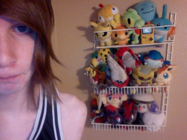 here's me and most of my pokédoll collection! 11,000th post yay >:D