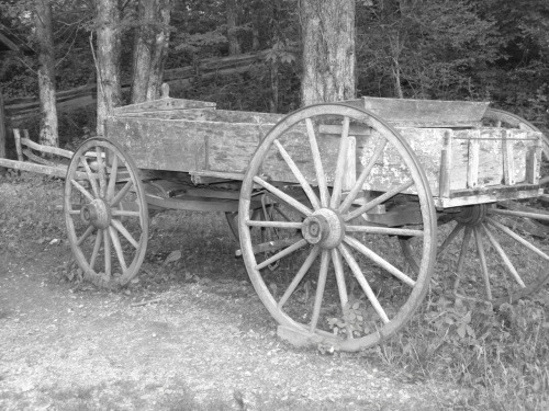 Old Farm wagon now on sale at RedBubble. Click to buy prints, framed artwork, or canvas!