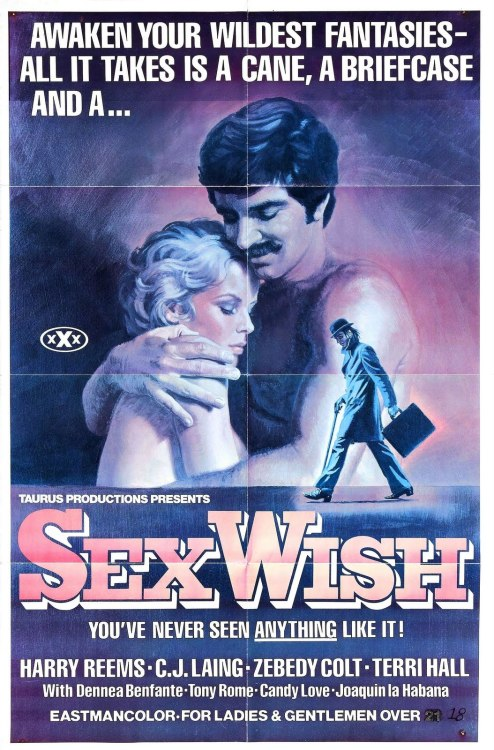 thehauntedrocket:  Vintage Adult Film Poster - Sex Wish