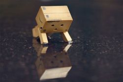 Danbo doing Push Ups