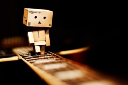Danbo Walking