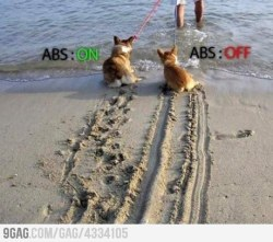 9gag:  ABS braking Explained.