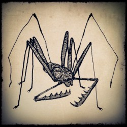 Tailles whip scorpion. 31/31  My illustration 31days, drew a piece about a day every day.